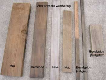 Result after wood has been treated with Eco Wood Treatment (4 weeks)